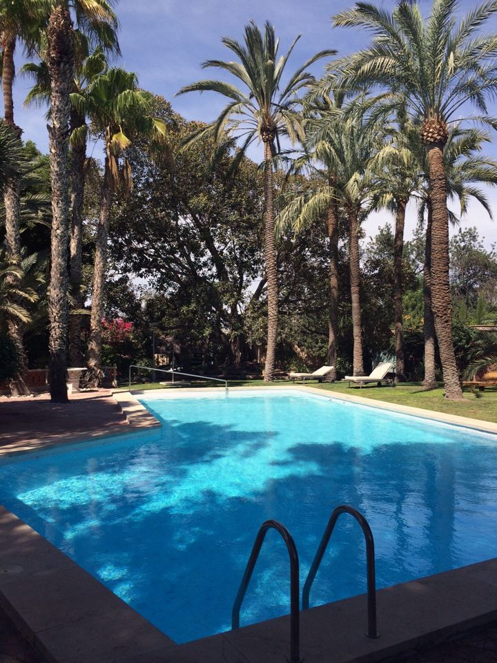 Reparaci n piscina en san juan de alicante sginmuebles for Piscina alicante
